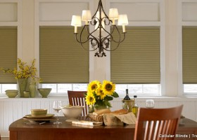 Translucent Honeycomb blinds
